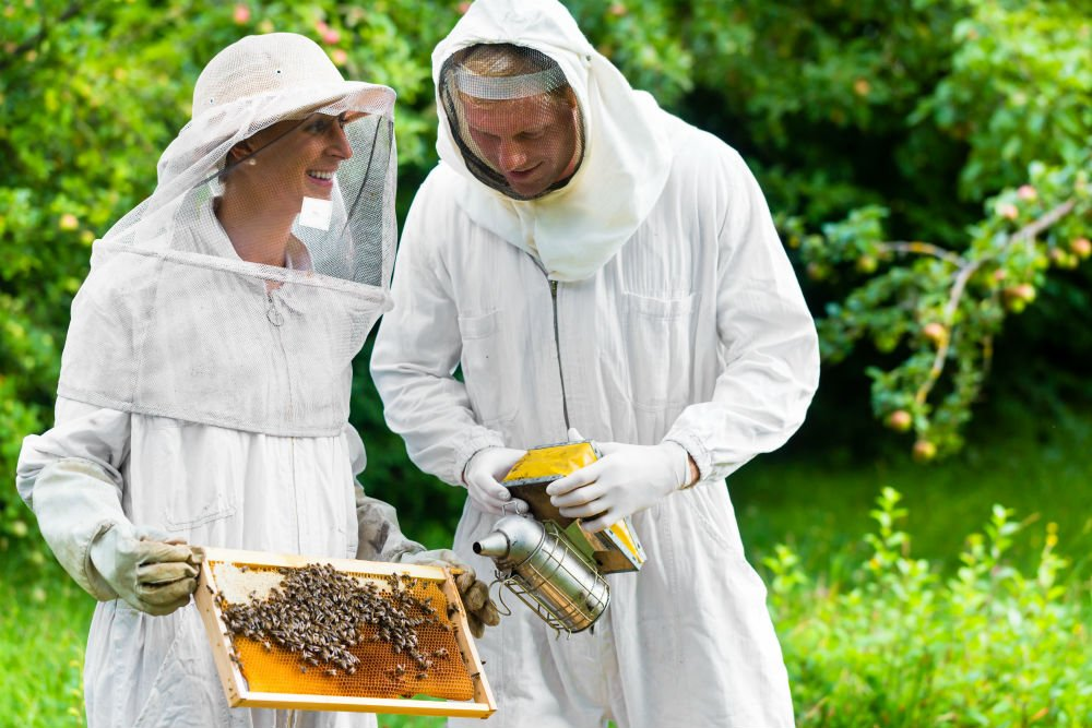 ​Join The Beekeeping Community
