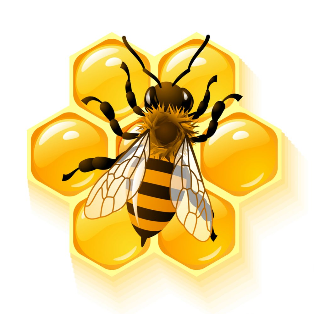 Best Bee Apps