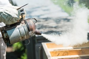 The Best Bee Smokers And Fuels For Beekeepers